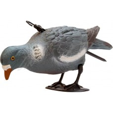Подсадной голубь Birdland кормящийся
